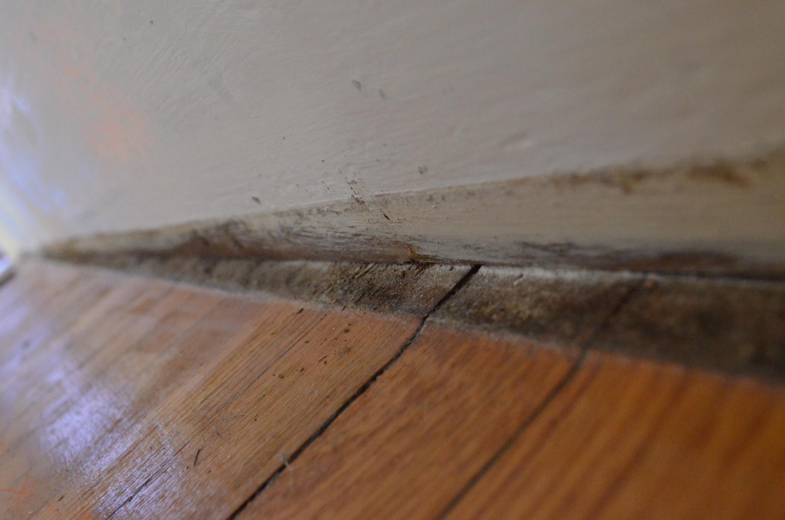 Floor Repairs 2